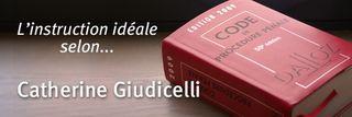 Giudicelli-instruction2009